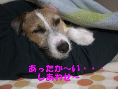 Photo_83